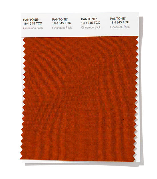 Pantone-Fashion-Color-Trend-Report-New-York-Spring-Summer-2020-Cinnamon-Stick